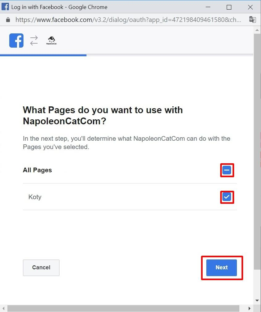 """Make sure that you see a blue tick next to all desired pages and then click """"Next""""."""